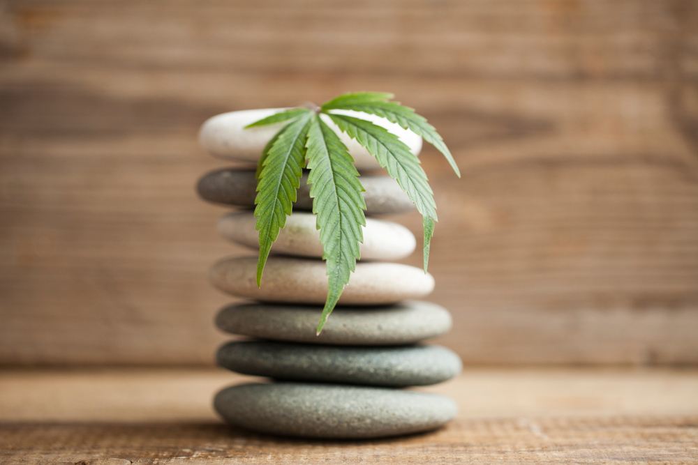 How A Mindful CBD Morning Routine Can Enhance Your Day