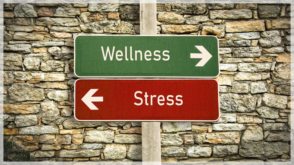 Calm Your Stress & Anxiety With CBD